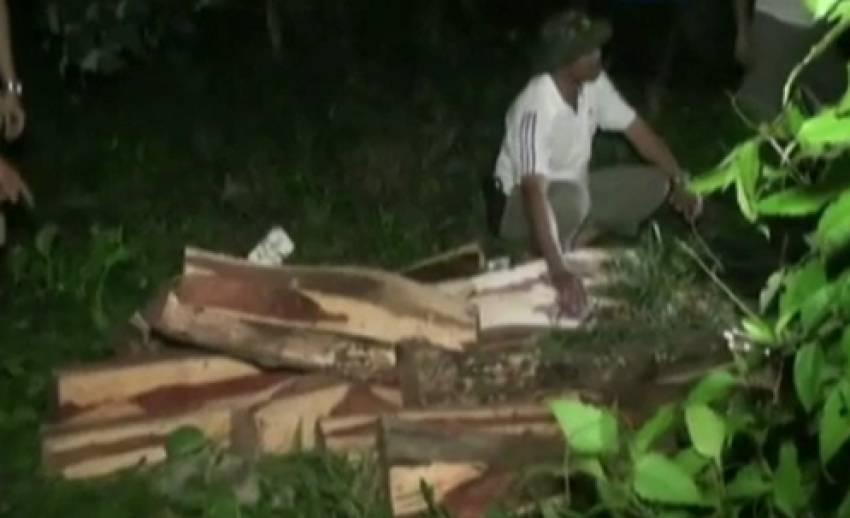 ตำรวจ จ.ตราด ยึดไม้พะยูง มูลค่ากว่า 2 ล้านบาท