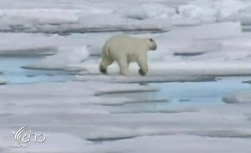 นานาประเทศร่วมประชุมวิกฤตการณ์น้ำแข็งละลายในขั้วโลกเหนือ