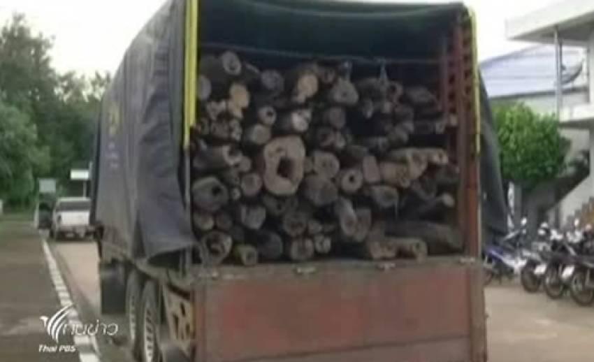 ตร.สกลนคร จับขบวนการค้าไม้พะยูง พร้อมของกลางกว่า 200 ท่อน
