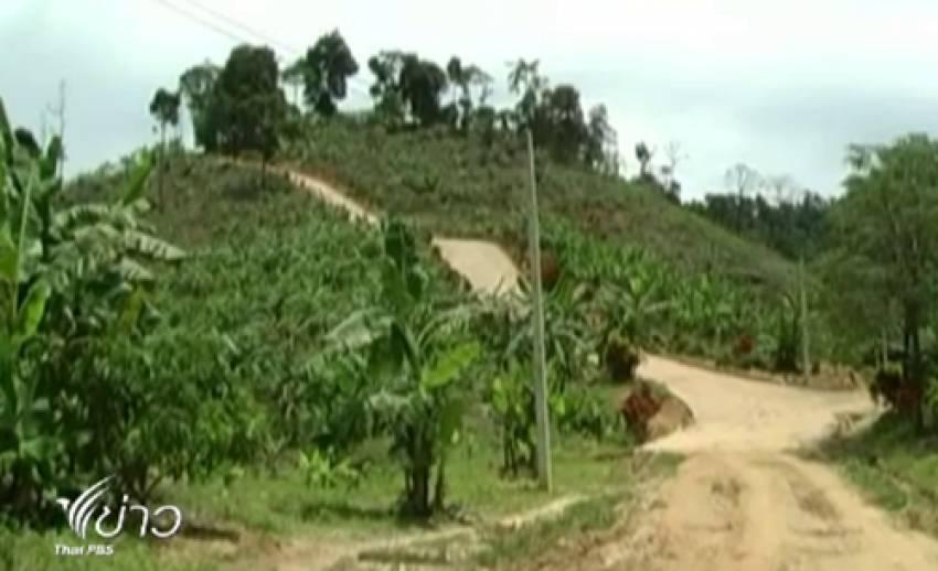 ผืนป่าอ.โป่งน้ำร้อน จ.จันทบุรี ถูกบุกรุกหลายพันไร่ จนท.เชื่อมีนักเมือง-นายทุนอยู่เบื้องหลัง