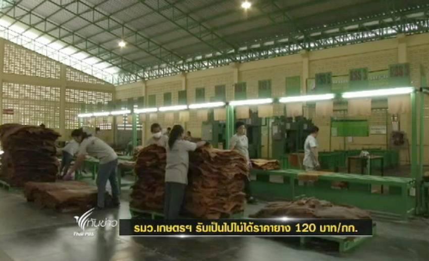 รมว.เกษตรฯ รับเป็นไปไม่ได้ยางราคา กก.ละ 120 บ.