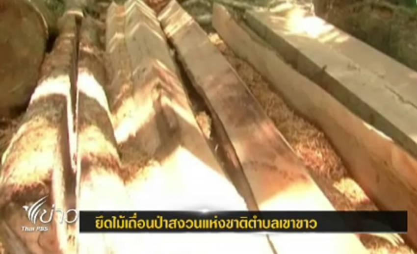 ป่าไม้ทุ่งสง จ.นครศรีฯ ยึดไม้ซุง 10 ท่อน บนผืนป่าที่ถูกทำลายเหลือ 500 ไร่