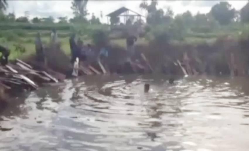 ทหารบุกจับโรงงานลักลอบแปรรูปไม้พะยูง พบของกลางซ่อนในสระน้ำ 400 ท่อน