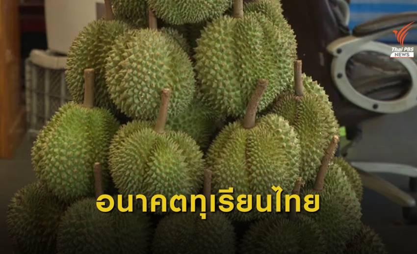อนาคตทุเรียนไทยน่าห่วง