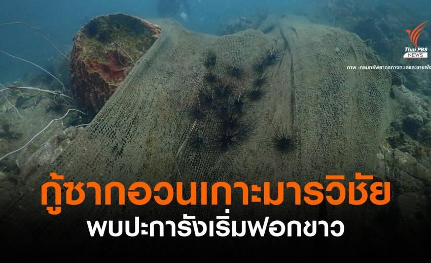 ดีเดย์ 3 ก.ค. ทช.-อาสาสมัคร ดำน้ำตัดอวนคลุมปะการังเกาะมารวิชัย