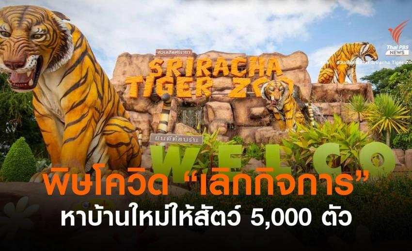 """""""สวนเสือศรีราชา"""" ประกาศเลิกกิจการ หาบ้านใหม่ให้สัตว์ 5,000 ตัว"""