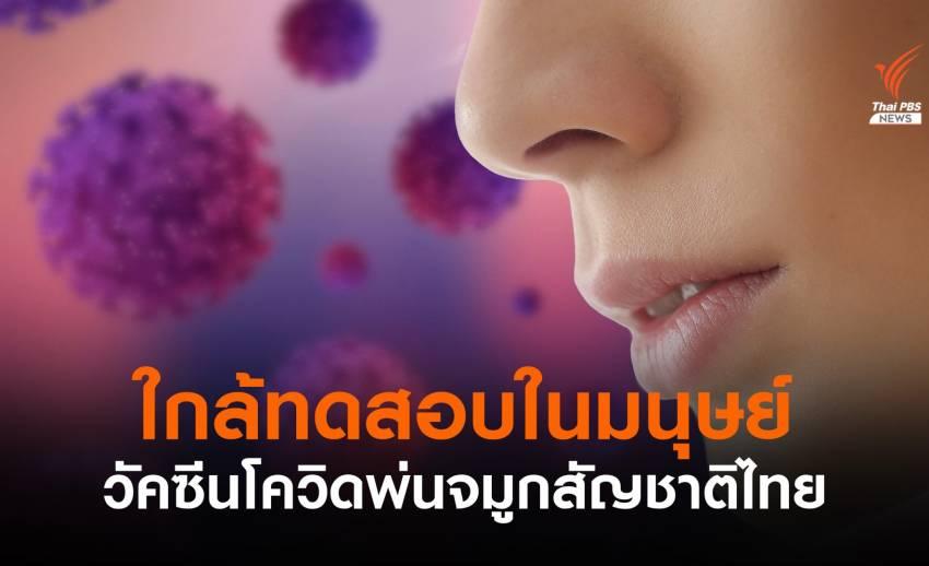 """วัคซีนสู้โควิด """"แบบพ่นจมูก"""" สัญชาติไทย"""