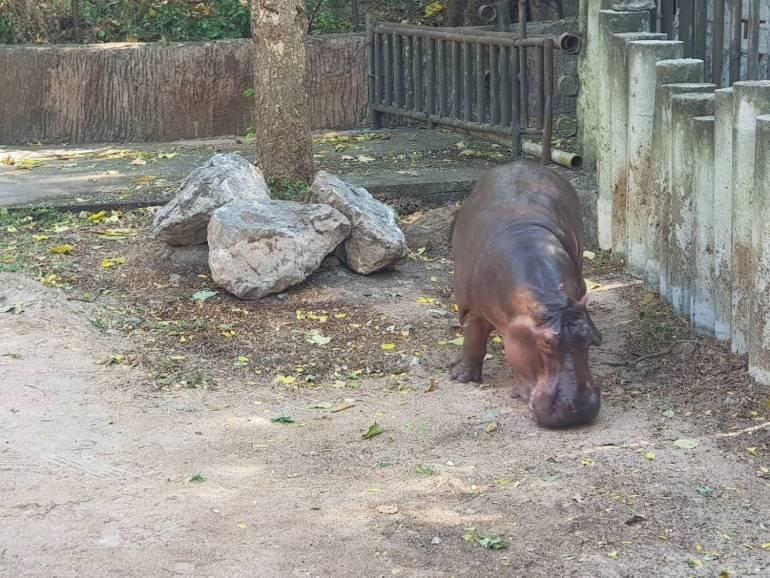 ภาพ:สวนสัตว์เปิดเขาเขียว จ.ชลบุรี