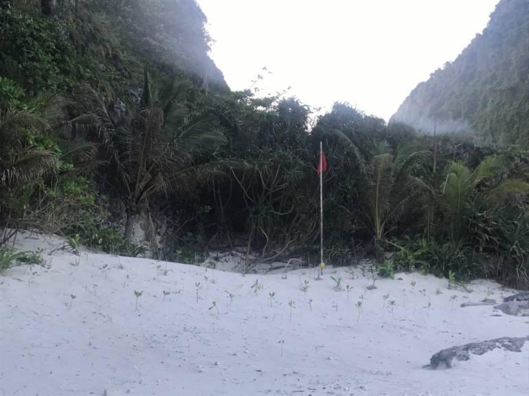 การปลูกป่าชายหาดหน้าอ่าวมาหยา