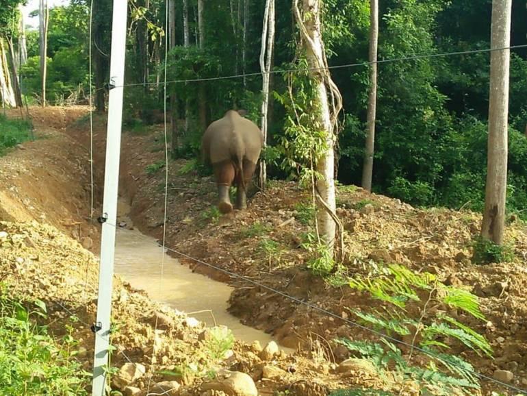 ภาพ:เขตรักษาพันธ์ุสัตว์ป่าเขาอ่างฤาไน