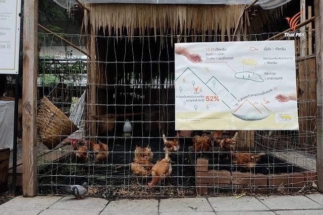เล้าไก่ ที่มีอินโฟกราฟิคบอกเล่าถึงเรื่องทรัพยากรที่ดิน การใช้ที่ดินปลูกข้าวโพดเลี้ยงสัตว์