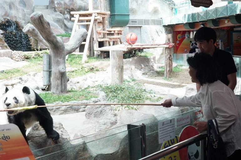ภาพ:สวนสัตว์เชียงใหม่