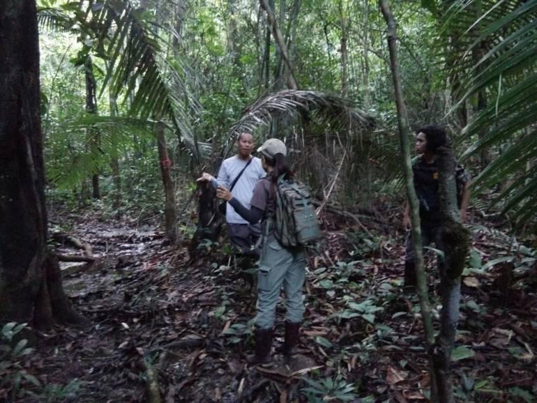 ภาพ:กรมอุทยานแห่งชาติสัตว์ป่าพันธุ์พืช