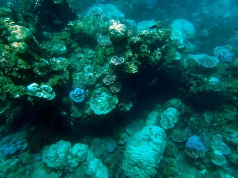 ภาพ :ศูนย์ปฏิบัติการอุทยานแห่งชาติ ทางทะเลที่สอง จังหวัดภูเก็ต