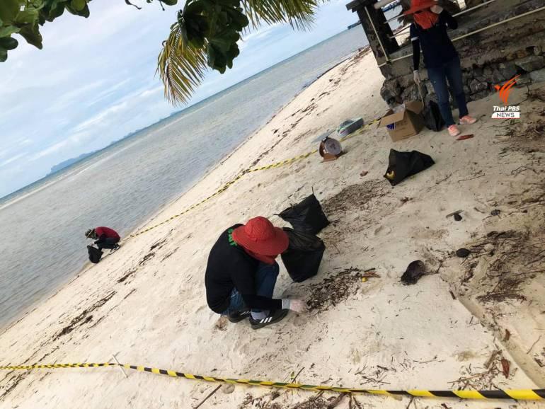 , ไร้เงานักท่องเที่ยว เกาะสมุยยังมีขยะวันละ 90 ตัน ช่วง COVID-19