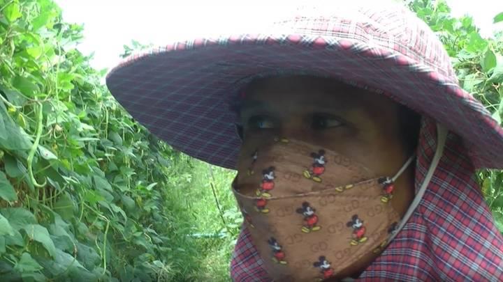 , ห้ามย้าย! ถังเคมีลอบทิ้งบ้านดีลัง เกษตรกรห่วงผักเปื้อนสารพิษ
