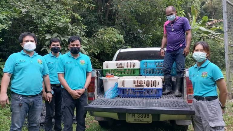 , รับมอบลิงแสม 44 ตัว ของกลางเตรียมส่งนายหน้า ขายประเทศเพื่อนบ้าน