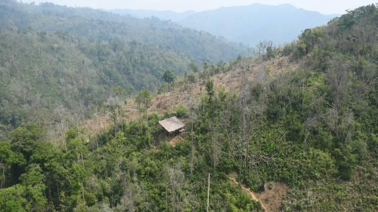 ภาพ:กรมอุทยานแห่งชาติสัตว์ป่าและพันธุ์พืช