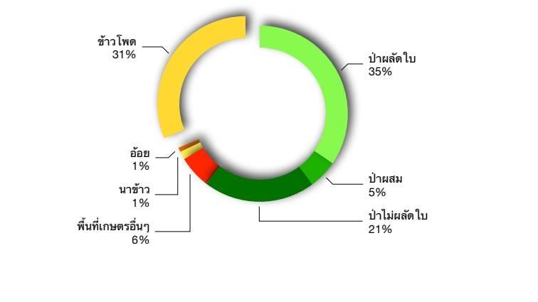 ภาพ: Greenpeace Thailand