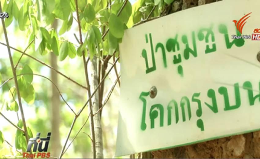 ชาวเพชรบูรณ์ร้องเพิกถอนเอกสารสิทธิ์ เชื่อออกโดยมิชอบ-ทับที่ป่าชุมชน