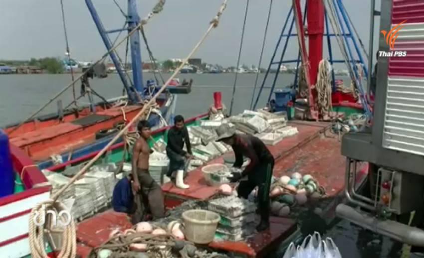 สมาคมเรือประมง เผยอาจงดทำประมง-ปิดตลาดปลา หาก ศปมผ.ไม่แก้ปัญหาขึ้นทะเบียนเรือ
