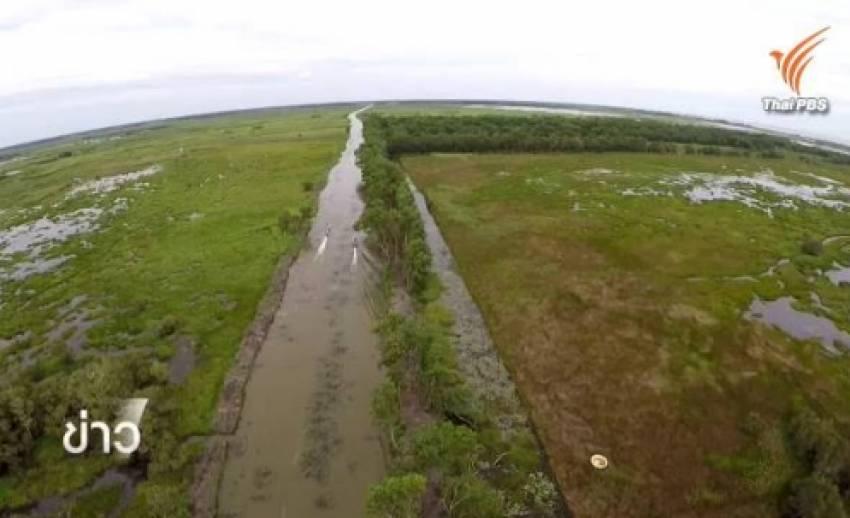 กรมที่ดินเร่งตรวจเอกสารสิทธิ์ที่ดินในป่าพรุเกาะนางคำ