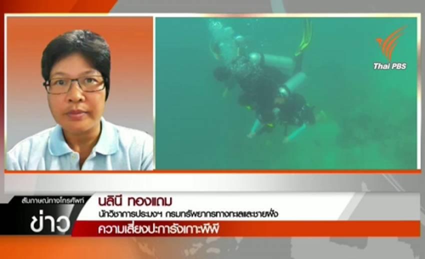นักวิชาการแนะจัดระเบียบการใช้ปะการัง คุมมาตรฐานผู้ประกอบการนำเที่ยวเกาะพีพี