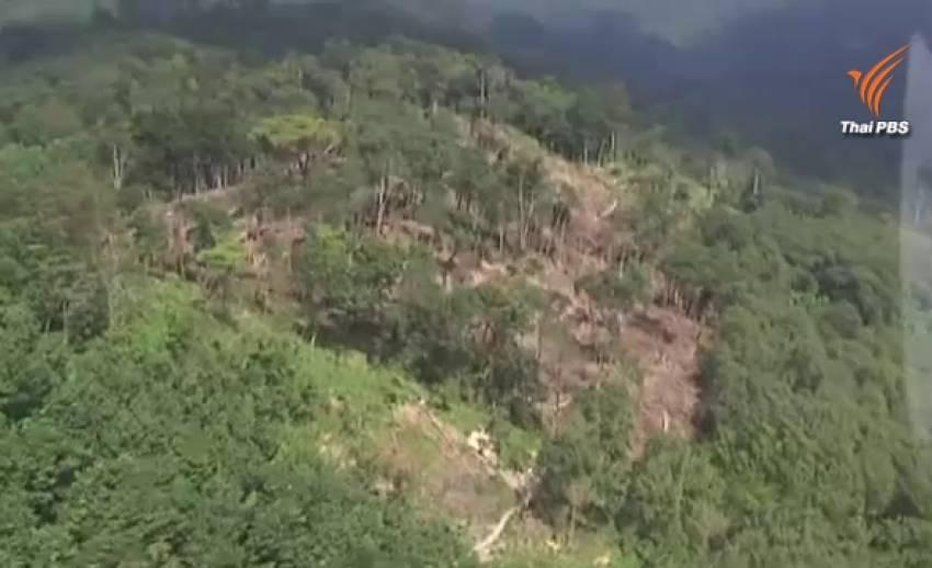 ผู้ว่าฯสั่งจนท.ยึดป่าคีรีวงที่บุกรุกอุทยานฯคืน บินตรวจพบเหี้ยนเป็นหย่อมกว่า 10 จุด