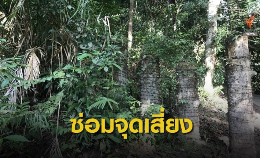 """""""เขาใหญ่"""" สร้างเพนียดเพิ่ม ขวางช้างป่าตกเหวนรก ก่อนฝนปี 63"""