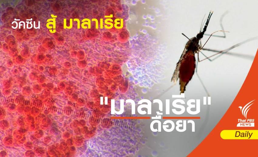 """นวัตกรรม """"ฟาสต์แทร็ก"""" ย่นเวลาพัฒนาวัคซีน สู้ """"มาลาเรีย"""""""