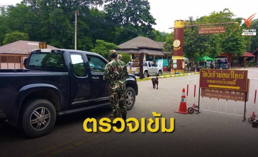 เข้มงวดท่องเที่ยวอุทยานฯเขาใหญ่ ป้องกันซ้ำรอยรถชนสัตว์ป่าตาย