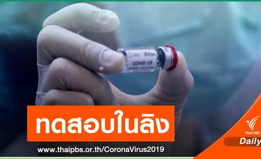 ครั้งแรก ทีมวิจัยจุฬาฯ-วช.เริ่มทดสอบวัคซีน COVID-19 ในลิง
